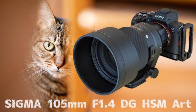 シグマ105mm F1.4 DG HSM Artのレビュー記事のアイキャッチ画像